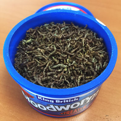 Bloodworm fish treats open